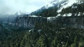 The Grey (2012) - Official Movie Trailer
