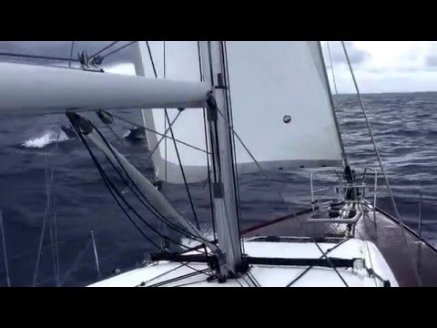 Sailing near Cartagena with dolphins, Sun Odyssey 469 , September 2015