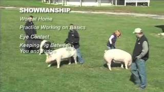 Show Pig Exercise Programs