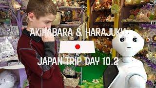 Japan Trip Day 10 2 Akihabra & Harajuku