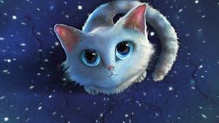 СП Мои любимые коты(Вышивка крестиком) Отчёт 2