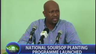 Launch of the National Soursop Treeplanting Campaign in St. Vincent