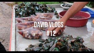 Kalumakaya Recipe  | Mussels Kerala Style
