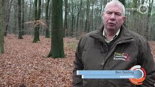 'Het is een schande'; werkgroep woedend om 'kaalslag' op Landgoed Warnsborn