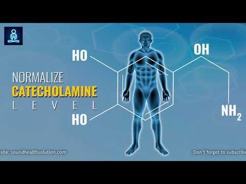 Catecholamines (dopamine, norepinephrine, epinephrine) - Binaural Beats Meditation