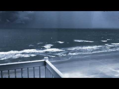 Loud and Heavy Rain and Wind Sounds | Tropical Storm Hurrica