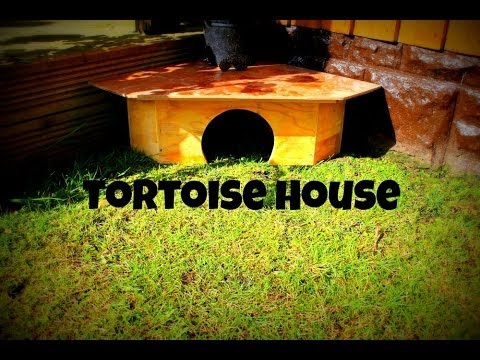 Making The Tortoise-Hut