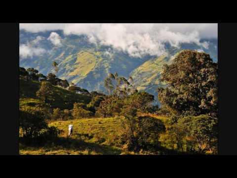 Ecuador Music and Images