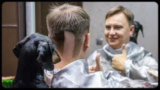 What a silly haircut! Cute & funny dachshund dog video!