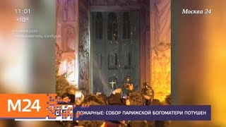 Смотреть видео Собор Парижской Богоматери потушен - Москва 24 онлайн