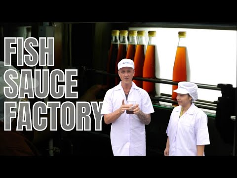 How Fish Sauce Is Made, Megachef Factory ❤️️