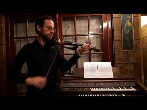 Leopoldo Sánchez Violinista