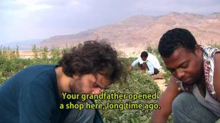 Fish Above Sea Level by Hazim Bitar - TRAILER