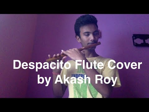 despacito---luis-fonsi-flute-cover-by-akash-roy