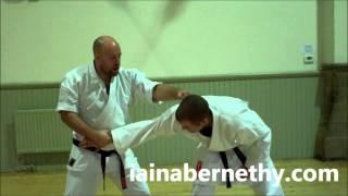 Practical Kata Bunkai: Full Pinan / Heian Godan Bunkai in a Single Drill