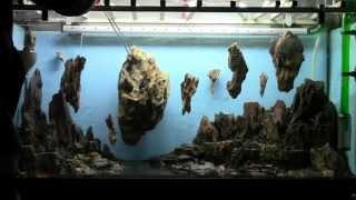 Allestimento acquario fantasy  Aquarium Setup - Aquascape Esercitazioni Jedi STEP 2
