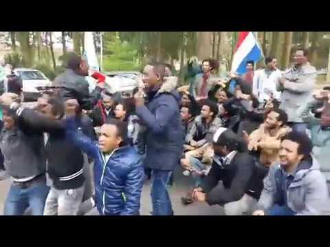 Eritrean opposition protesting YPFDJ conference in Holland
