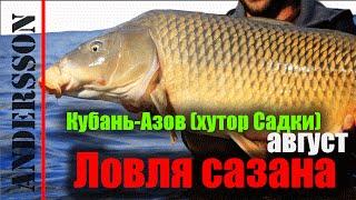 [Рыбалка] Ловля сазана и карпа на Кубани-Азов-хутор Садки (август)