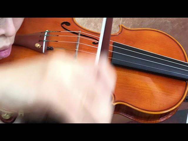 Ifstrings Private Stock Pristine #159 Antonio Stradivarius 1716