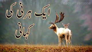 Pir Saqib Shaami Urdu Bayan - Aik Hernee Ka Waqai | Best Emotional Bayan 2017