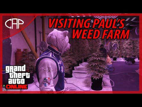 Visiting Paul's Weed Farm [GTA 5 Online Funny Moments]