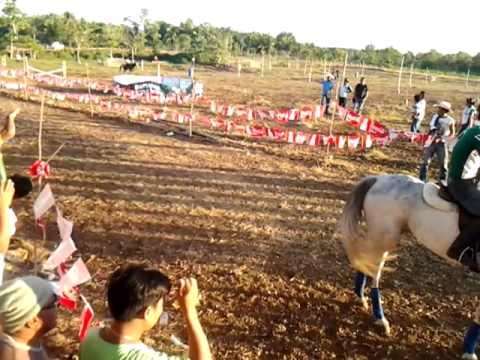 Bohol Horse Race
