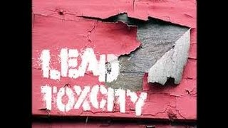 Lead Poisoning: Exposure, Effects, & Preventative Measures for Shooters