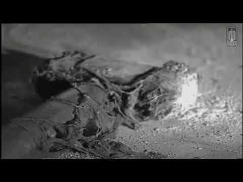 Sahara Band - Eksekusi (Original Clip)