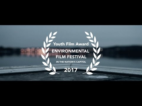 99¢ | A Short Film About the Environment