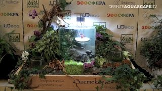 """MiniGarden Aqua design contest 2015 - 4th place """"Through the Looking Glass"""""""