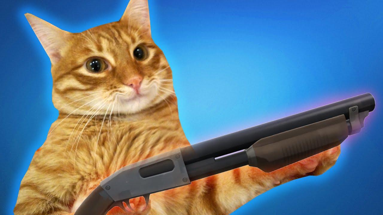 Кот больше не пытается меня убить