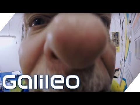 Der Bananenschnüffler von Bremerhaven | Galileo | ProSieben