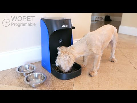 automatic-dog-cat---pet-feeder---time-&-portions-programed