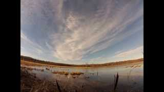 Duck Hunting at Big Slash Ducks and Bucks Holly Grove, Arkansas