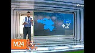 """""""Климат-контроль"""": что происходит с погодой на планете - Москва 24"""