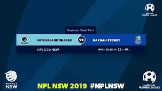 NPL NSW U20's, Round 2, Sutherland Sharks FC v Hakoah Sydney City East FC #NPLNSW