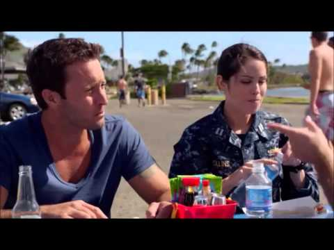 steve mcgarrett and catherine rollins relationship questions