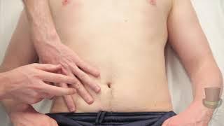 Gastrointestinal Exam - Percus…