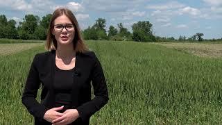 Agrokultura 55. emisija