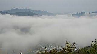 テラスから一望 亀岡盆地の霧 かめおか霧のテラス