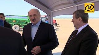 Александр Лукашенко поручил навести порядок с расходованием топлива при посевной кампании
