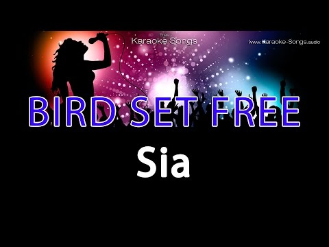 Sia 'Bird Set Free' Instrumental Karaoke Version without choral and lyrics