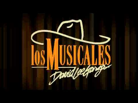 DAVID LEE GARZA Y LOS MUSICALES SIMPLY THE BEST - SIMPLY TEJANO