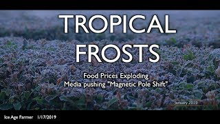 Tropical Frosts: Food Prices Exploding & 'Pole Shift' in Media