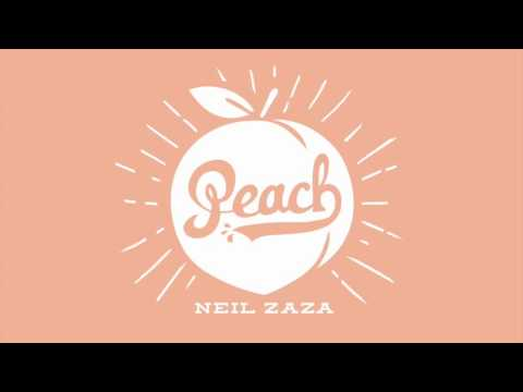 Neil Zaza-Somewhere in Time  (From the CD