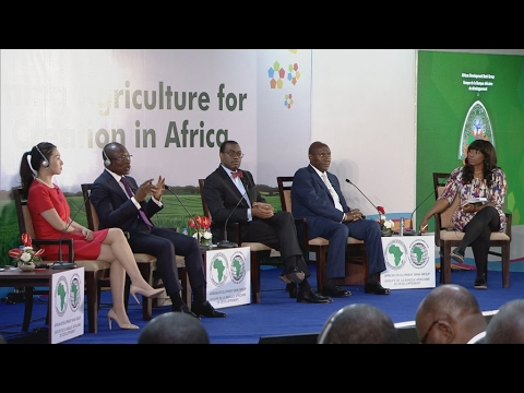 Let's talk Africa-Asia partnerships (part 2)
