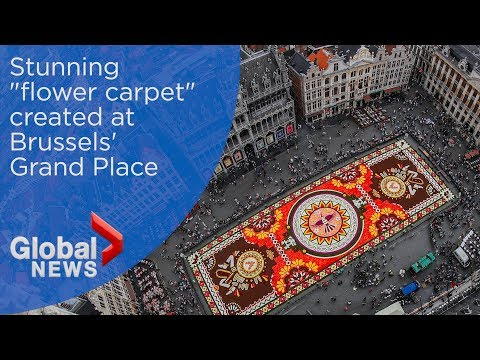 "Massive ""flower carpet"" blossoms in Brussels' iconic Grand Place"
