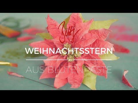 Poinsettia - Weihnachtsstern aus Blütenpaste | Betty´s Sugar Dreams