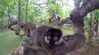 Остров Нуси-Бе, Мадагаскар
