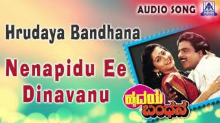 hrudaya bandhana quotnenapidu ee dinavanuquot audio song ambareeshsudharani akash audio